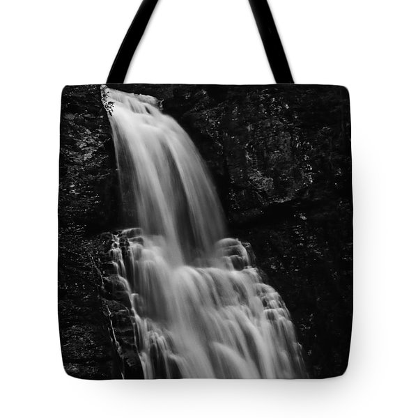 Tote Bag featuring the photograph Bushkill Falls by Louis Dallara