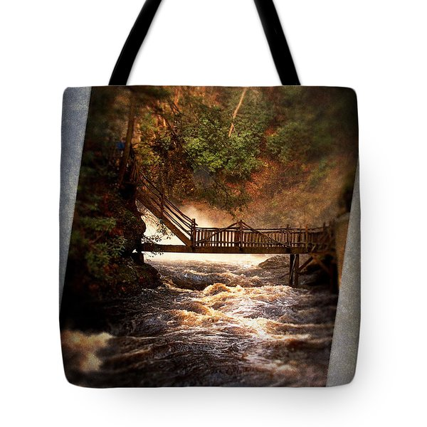 Tote Bag featuring the photograph Bushkill Falls by Phil Mancuso