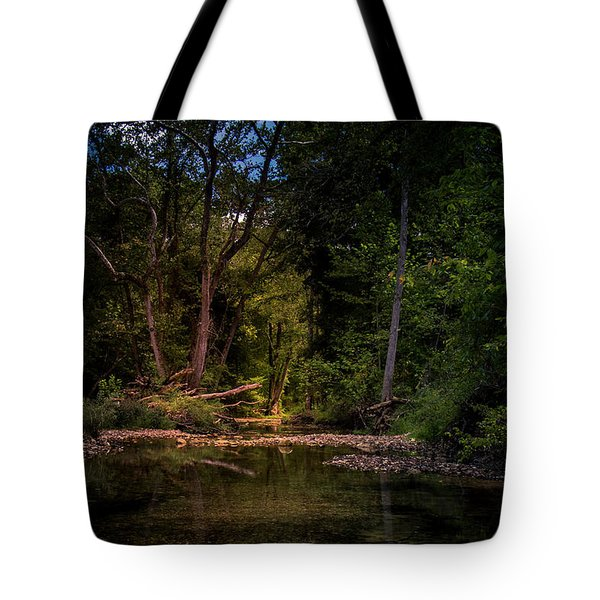 Busiek State Forest Tote Bag