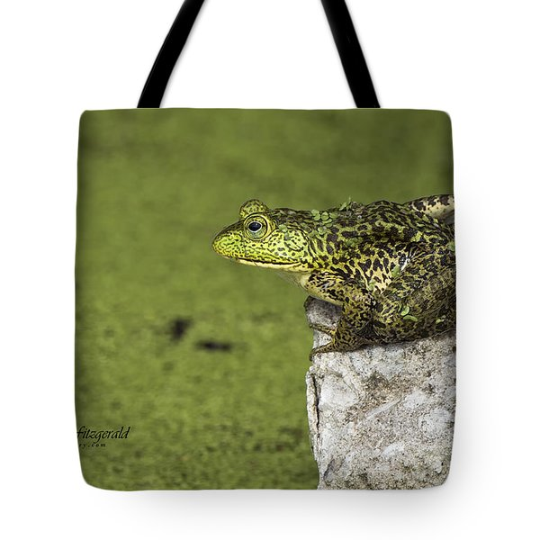 Buster On The Rocks Tote Bag