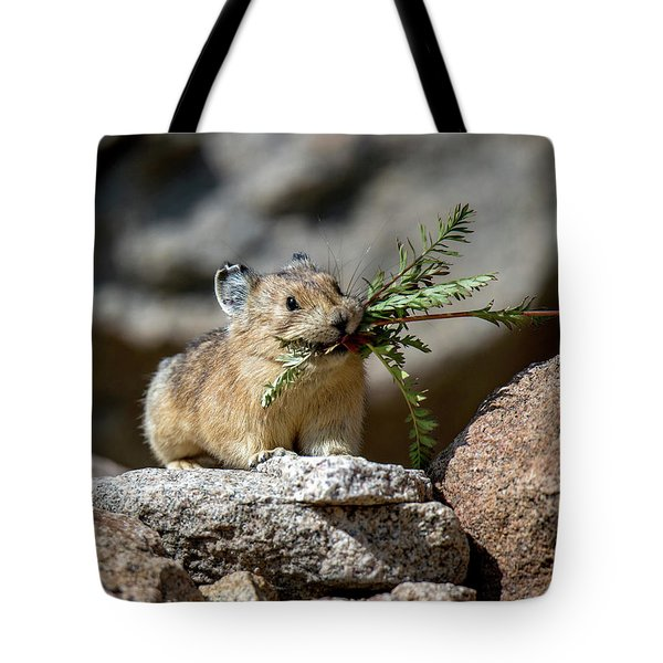 Busy As A Pika Tote Bag