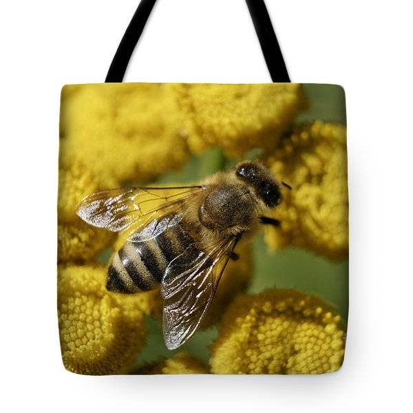 Busy Honey Bee Tote Bag