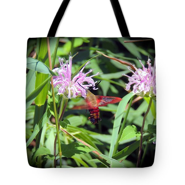 Busy Hummingbird Moth Tote Bag