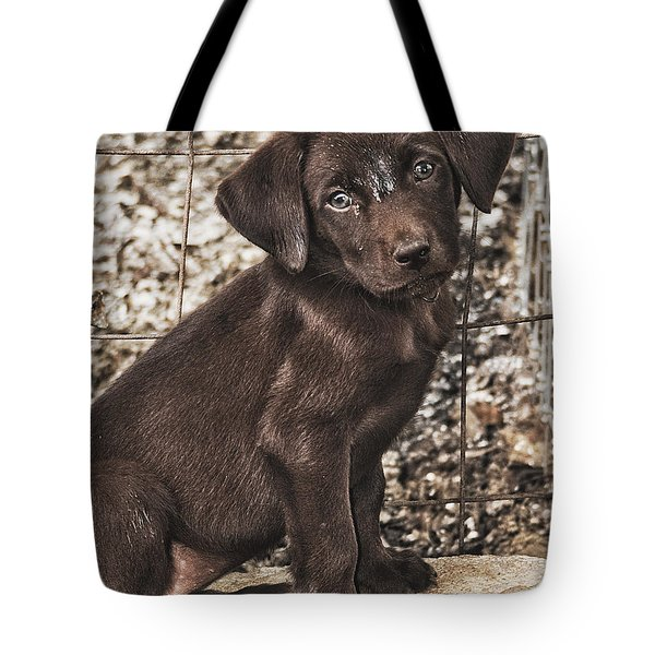 But Im Still Cute Right Tote Bag