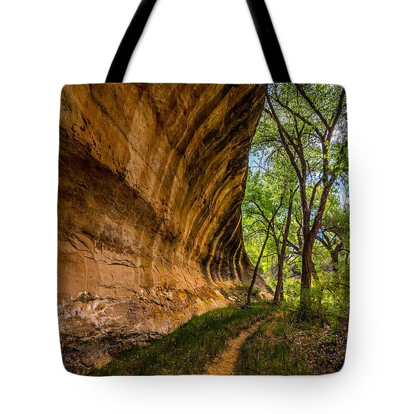 Butler Wash Wave Formation - Blanding - Utah Tote Bag by Gary Whitton