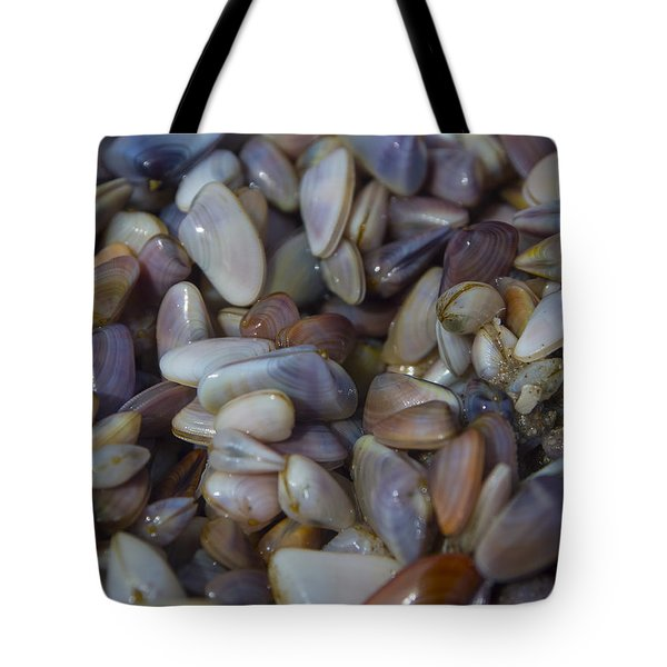 Buttefly Clam Rainbow Tote Bag