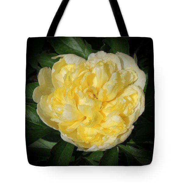 Buttercream Peony Tote Bag by Teresa Schomig