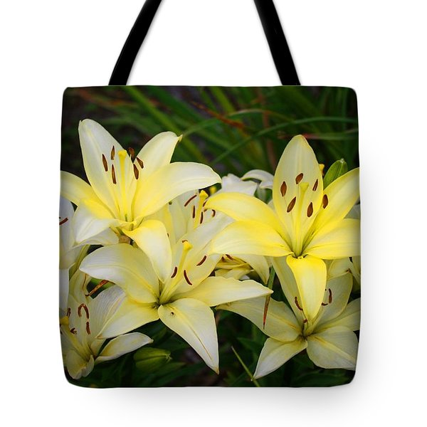 Tote Bag featuring the photograph Buttercreams by Kathryn Meyer