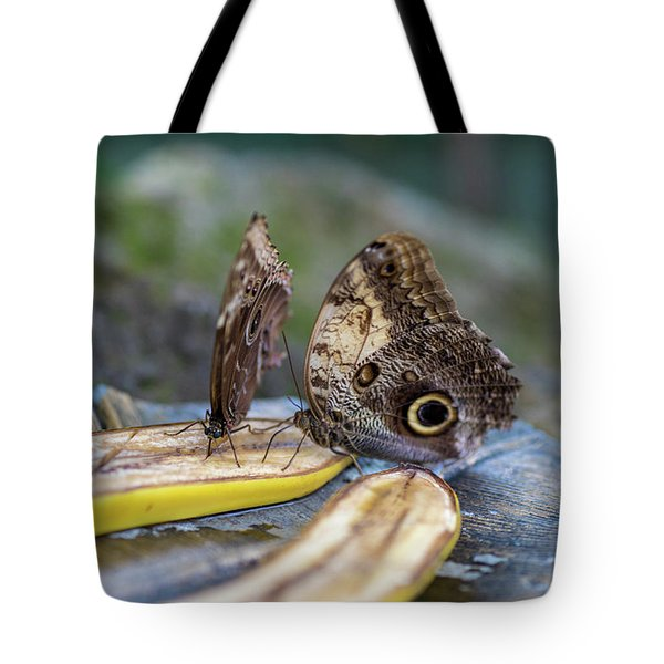 Tote Bag featuring the photograph Butterflies Eating Bananas by Raphael Lopez