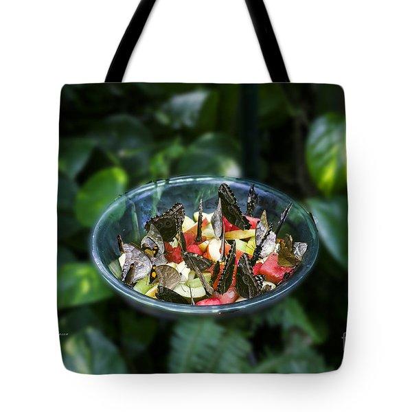 Butterflies Feeding Tote Bag
