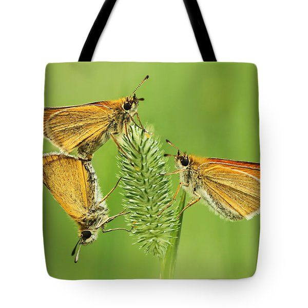 Butterflies Tote Bag by Mircea Costina Photography