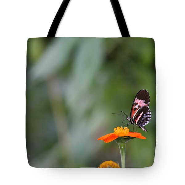 Butterfly 16 Tote Bag