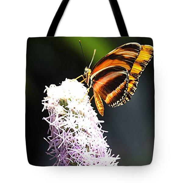 Butterfly 2 Tote Bag by Tom Prendergast
