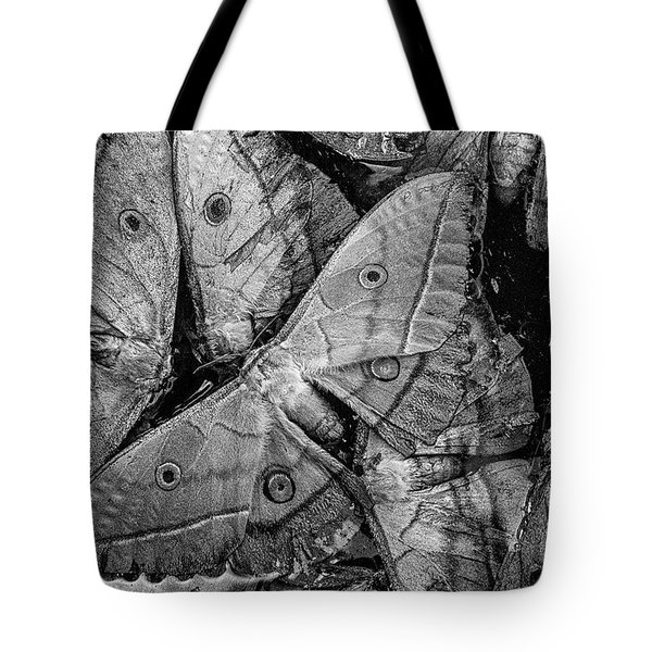 Butterfly #2056 Bw Tote Bag