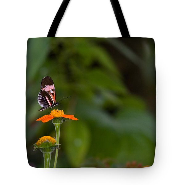 Butterfly 26 Tote Bag