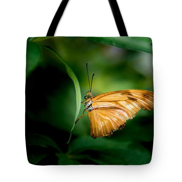 Tote Bag featuring the photograph Butterfly 5 by Jay Stockhaus