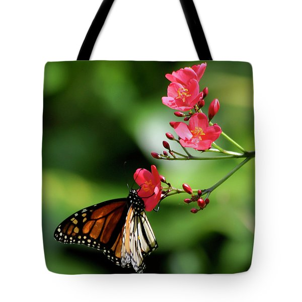 Butterfly And Blossom Tote Bag