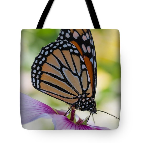 Butterfly And Hibiscus Tote Bag