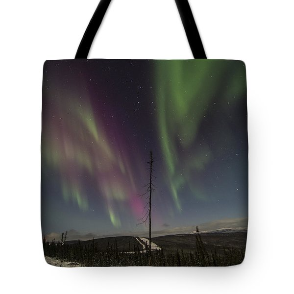 Butterfly Aurora Tote Bag