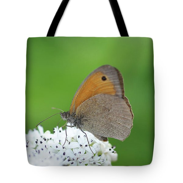 Tote Bag featuring the photograph Butterfly by Bess Hamiti