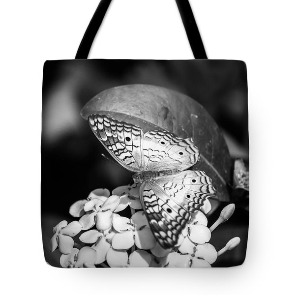 Tote Bag featuring the photograph Butterfly Bw - Ins18 by G L Sarti