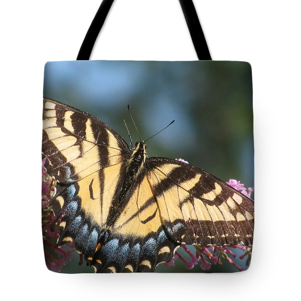 Tote Bag featuring the photograph Butterfly Closeup by Alfred Ng