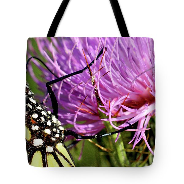 Butterfly On Bull Thistle Tote Bag