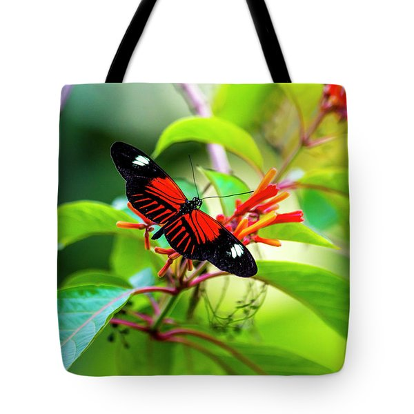 Tote Bag featuring the photograph Butterfly  by David Morefield