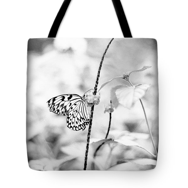 Butterfly Eatting  Tote Bag