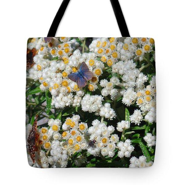 Butterfly Extravaganza Tote Bag by Karen Molenaar Terrell