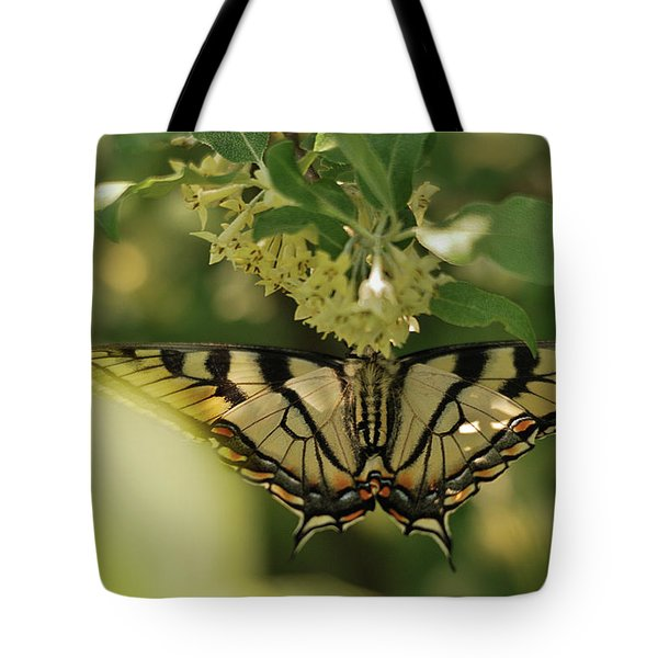 Tote Bag featuring the photograph Butterfly From Another Side by Susan Capuano