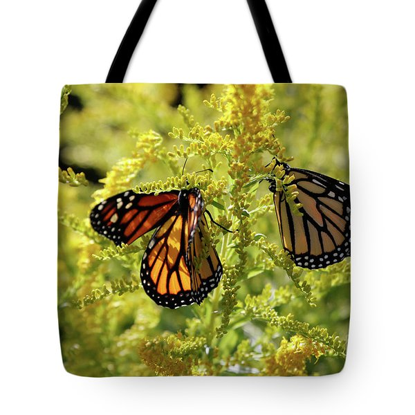 Butterfly In Fall  Tote Bag
