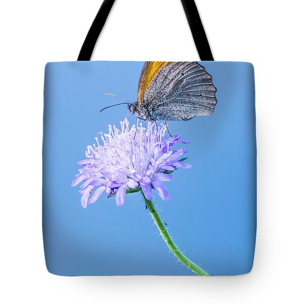 Butterfly Tote Bag by Jaroslaw Grudzinski