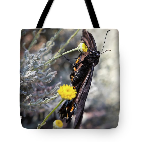 Butterfly Tote Bag by Lawrence Burry