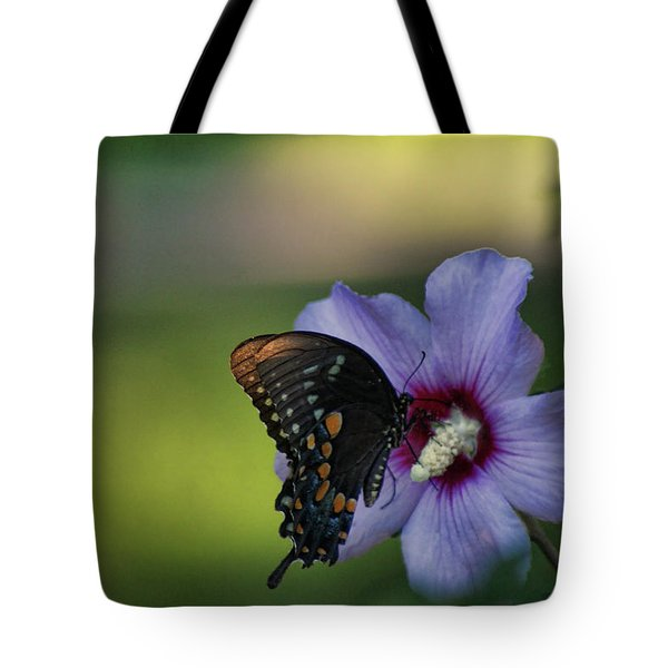 Butterfly Lunch Tote Bag