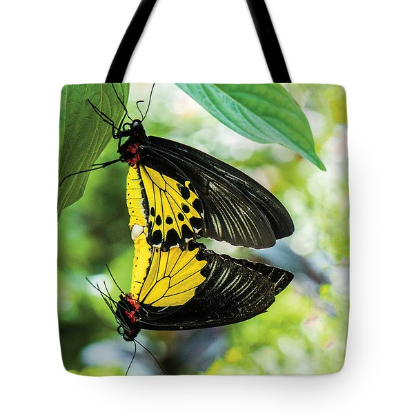 Butterfly Mating Tote Bag