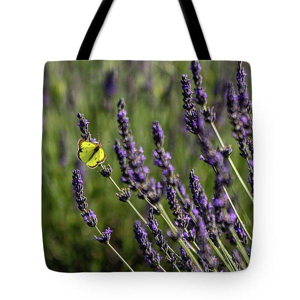 Butterfly N Lavender Tote Bag