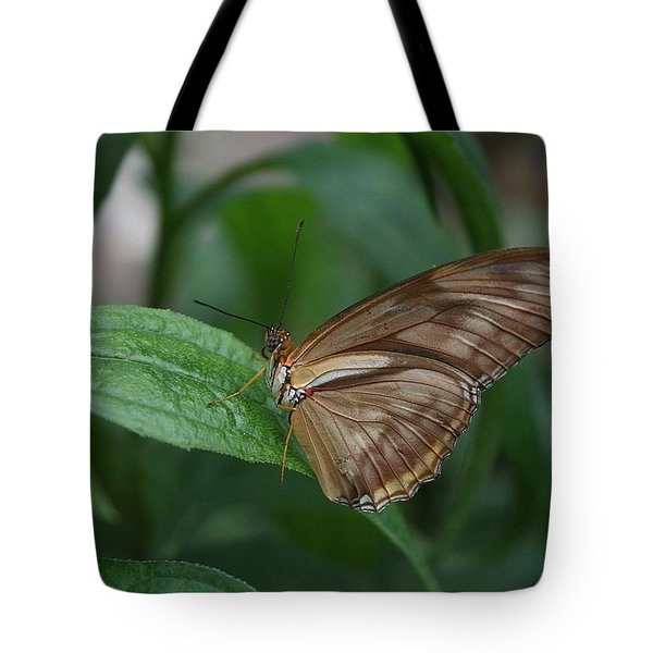 Tote Bag featuring the photograph Butterfly On Leaf by Cathy Harper