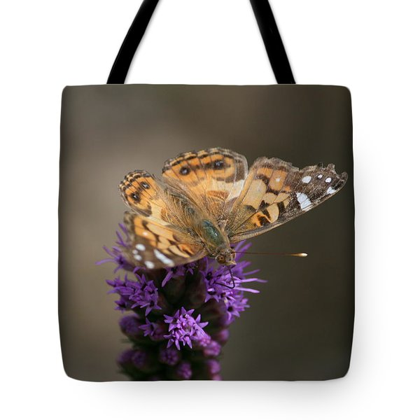 Tote Bag featuring the photograph Butterfly In Solo by Cathy Harper