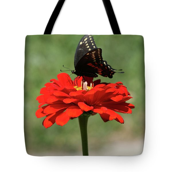 Butterfly On Red Zinnia Tote Bag