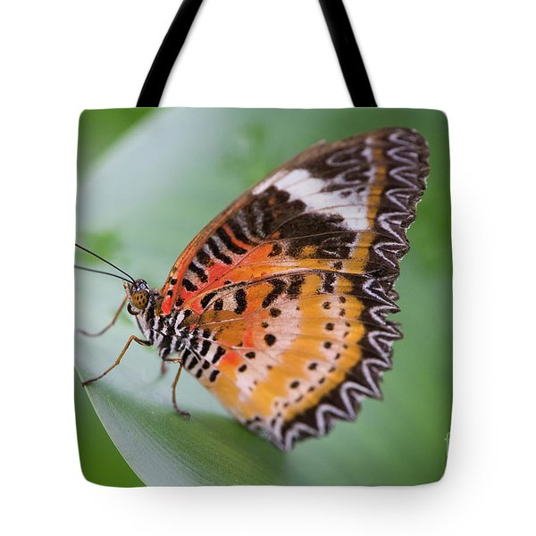 Butterfly On The Edge Of Leaf Tote Bag