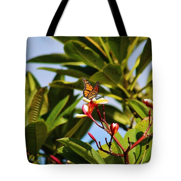 Tote Bag featuring the photograph Butterfly Plumaria by Craig Wood