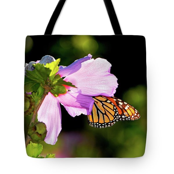 Butterfly Sunset Tote Bag by Betty LaRue