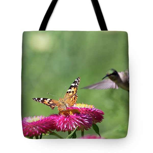 Tote Bag featuring the photograph Butterfly Vs Hummingbird 1 by Brian Hale