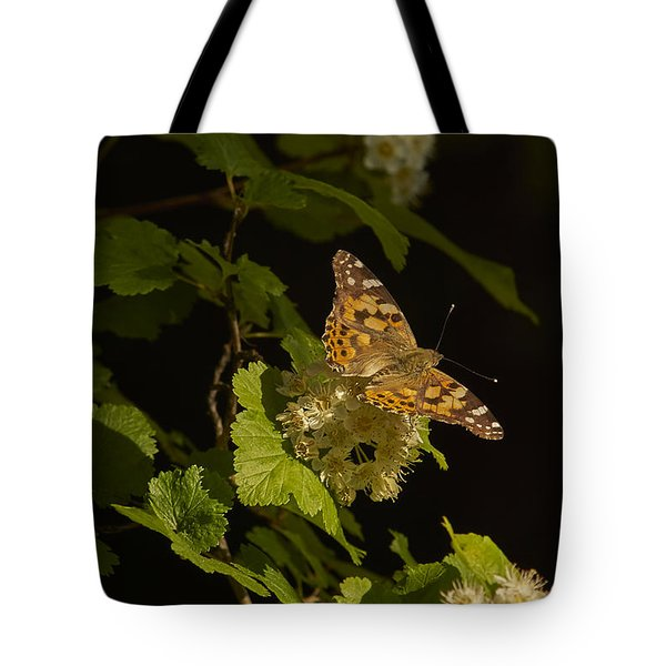 Butterfly2 Tote Bag by Loni Collins