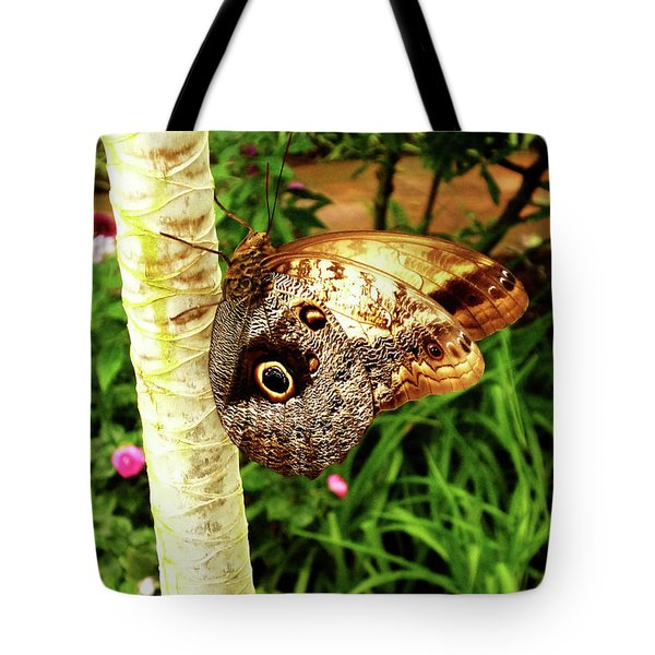Butterfly's Eyes Tote Bag