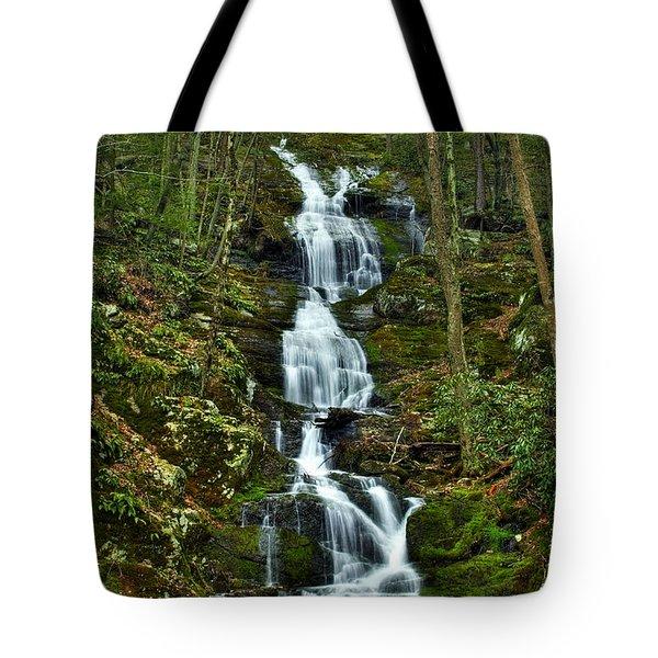 Buttermilk Falls Spring Tote Bag