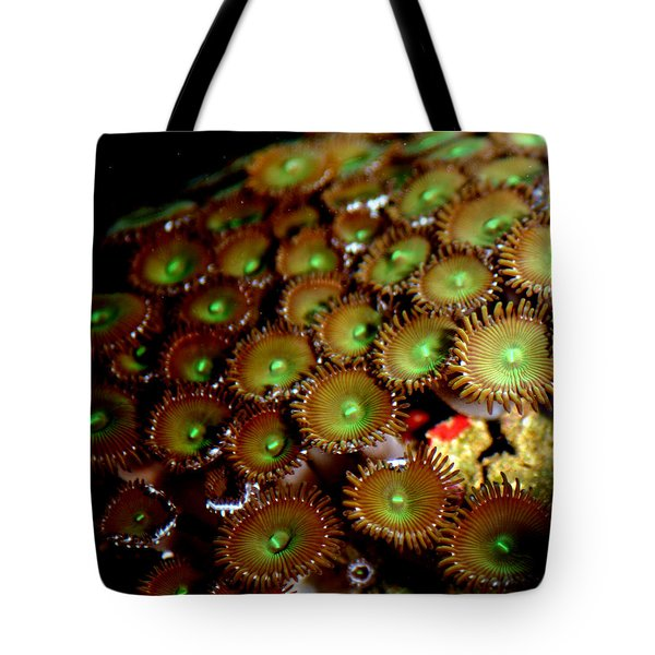 Button Polyps Tote Bag