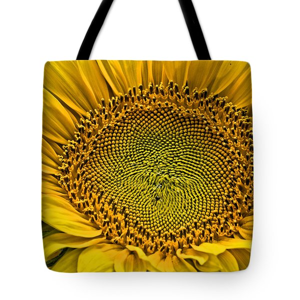 Buttonwood Sunflower 3 Tote Bag