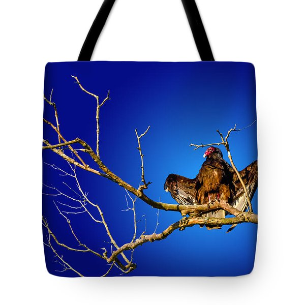 Buzzard Blues Tote Bag